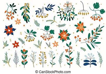 plants, leaves, зима, цветочный, рука, дерево, падуб, день отдыха, коллекция, ягода, рождество, украшение, декоративный, flowers., вничью, elements, symbols., вектор, рябина, ветви