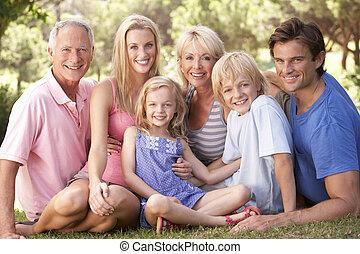 relaxing, семья, парк, grandparents, children, parents