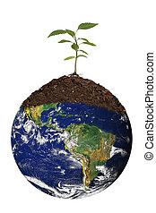 renewing, земля