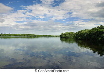 sanibel, флорида, остров