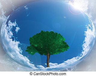 sphere., зеленый, небожитель, иллюстрация, дерево