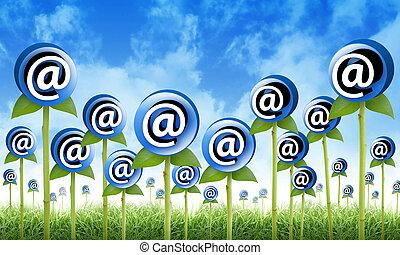 sprouting, inbox, цветы, интернет, эл. адрес