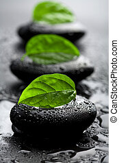 stones, воды, leaves, drops, дзэн