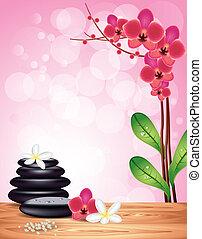 stones, спа, цветы, задний план, орхидея