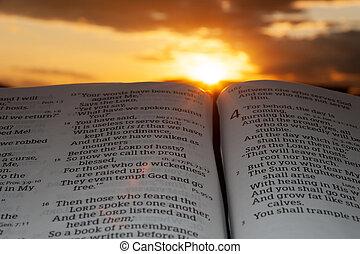 sunbeams, 4:2., clouds, задний план, святой, малахия, библия, открытый, закат солнца, основной момент