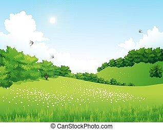 trees, цветы, пейзаж, зеленый, clouds